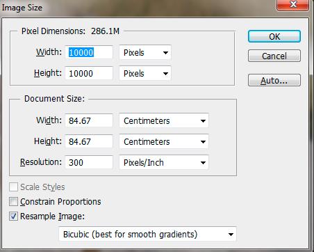 example image size panel