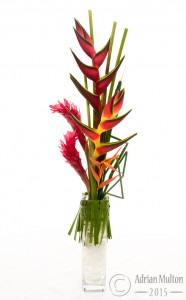 exotic flower in glass vase