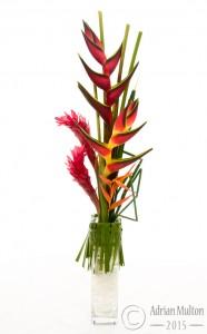 exotic flower in glass vase