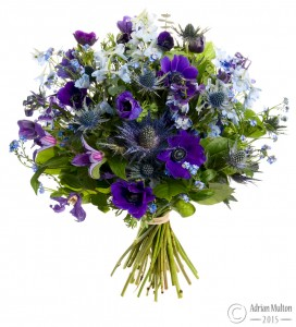 bouquet of flowers against pure white background